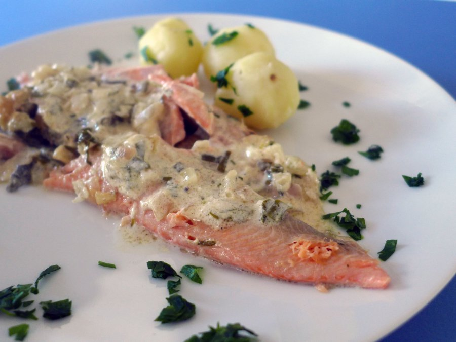 trout with riesling