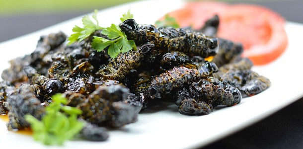 Amacimbi Mopane Worms