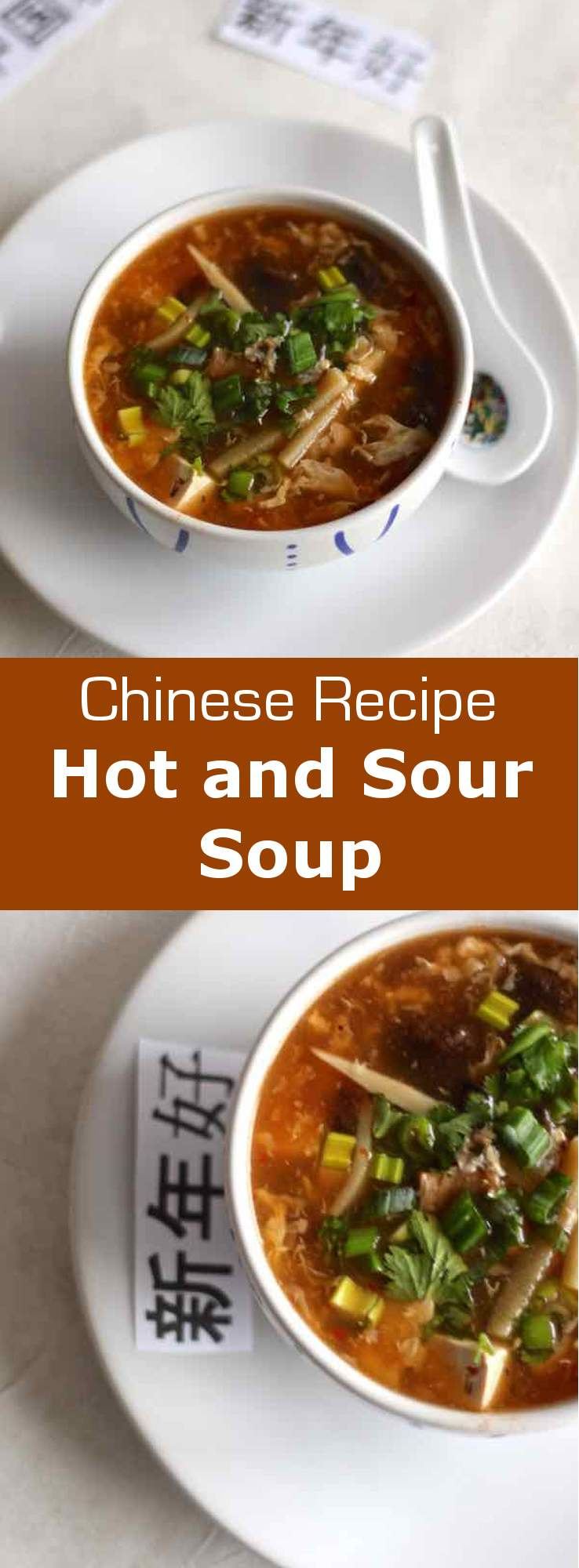 Hot and Sour Soup - Traditional Chinese Recipe | 196 flavors