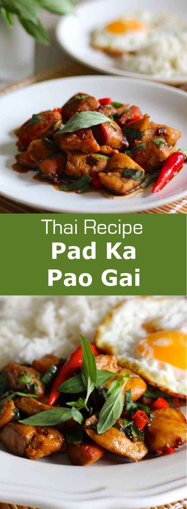 Pad kra pao gai is a delicious traditional Thai dish consisting of chicken perfumed with sacred basil and chili. #Thai #196flavors