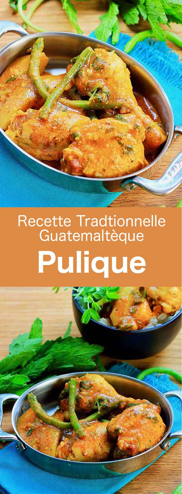 Le pulique est un ragoût de viande et de légumes épais, qui se prépare avec du poulet, du bœuf ou du porc. Il est reconnu comme l'un des plats nationaux du Guatemala. #Guatemala #CuisineGuatemalteque #AmeriqueCentrale #CuisineDuMonde #196flavors