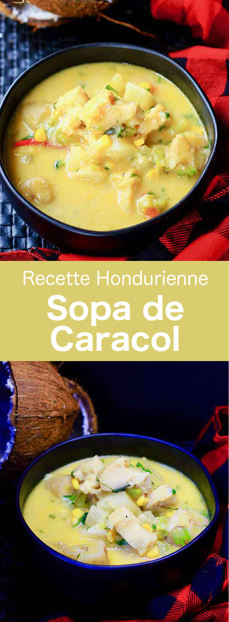 La sopa de caracol est une soupe de conque traditionnelle du Honduras dont différentes versions sont populaires en Amérique latine et dans les Caraïbes. #Honduras #CuisineHonduras #CuisineHondurienne #AmeriqueCentrale #CuisineDuMonde #196flavors