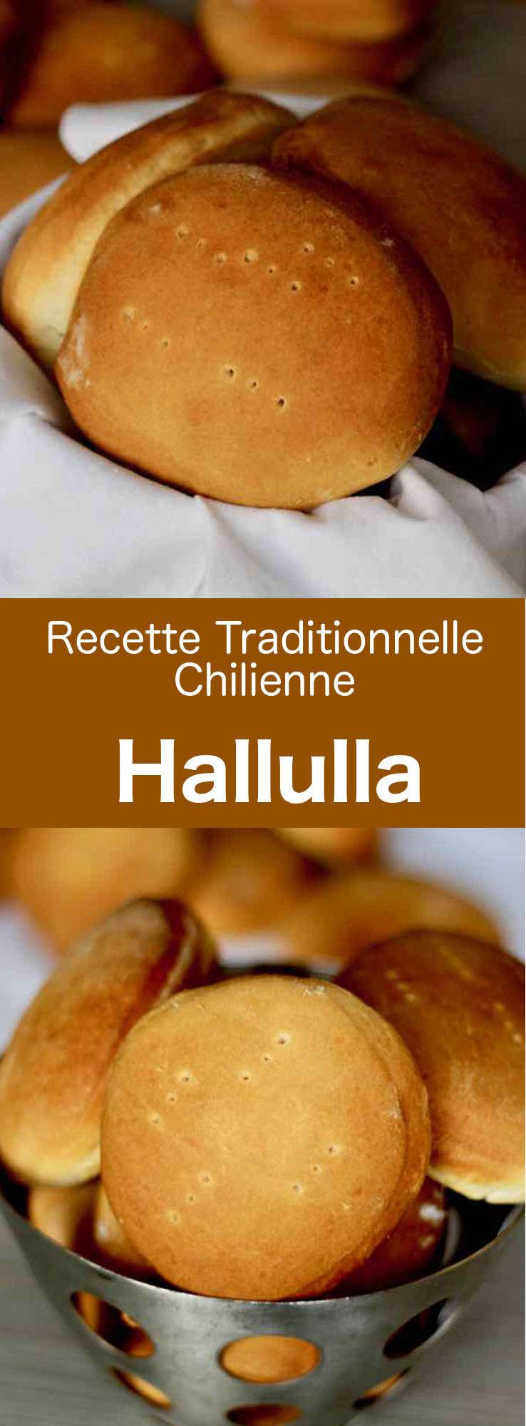 La hallulla est un des pains les plus populaires du Chili. Il s'agit d'un pain rond et plat qu'on retrouve aussi dans les rues de Bolivie et de l'Équateur. #Chili #RecetteChilienne #CuisineChilienne #CuisineDuMonde #196flavors