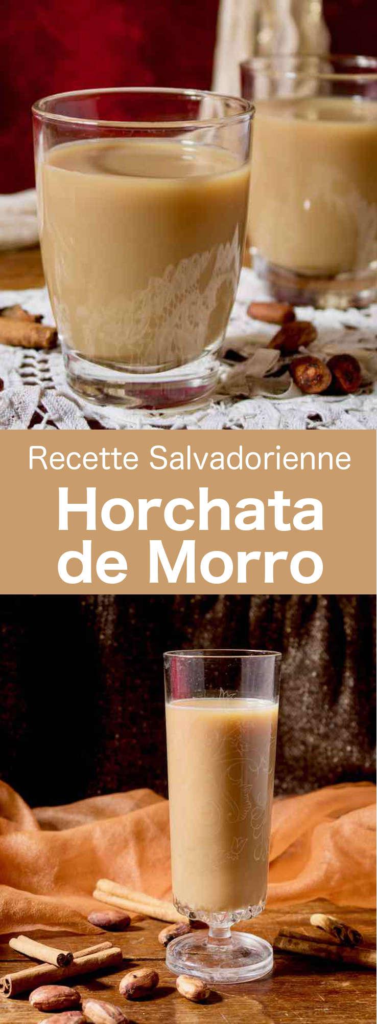 La horchata de morro est une boisson fraîche populaire du Salvador préparée à partir d'un mélange d'épices et de graines telles que les graines de morro, de cacao, de sésame, d'arachide et d'autres. #Salvador #CuisineSalvadorienne #AmeriqueCentrale #CuisineDuMonde #196flavors