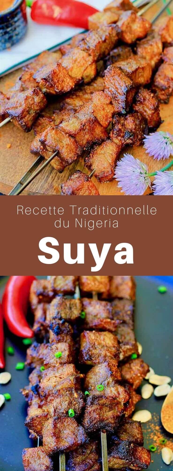 Le suya est une grillade de viande de bœuf, de mouton ou de poulet en brochettes populaire dans les rues du Ghana, du Nigeria, du Niger, du Cameroun, et du Soudan. #Nigeria #CuisineNigeriane #RecetteNigeriane #Ghana #Cameroun #Soudan #Niger #CuisineDuMonde #196flavors
