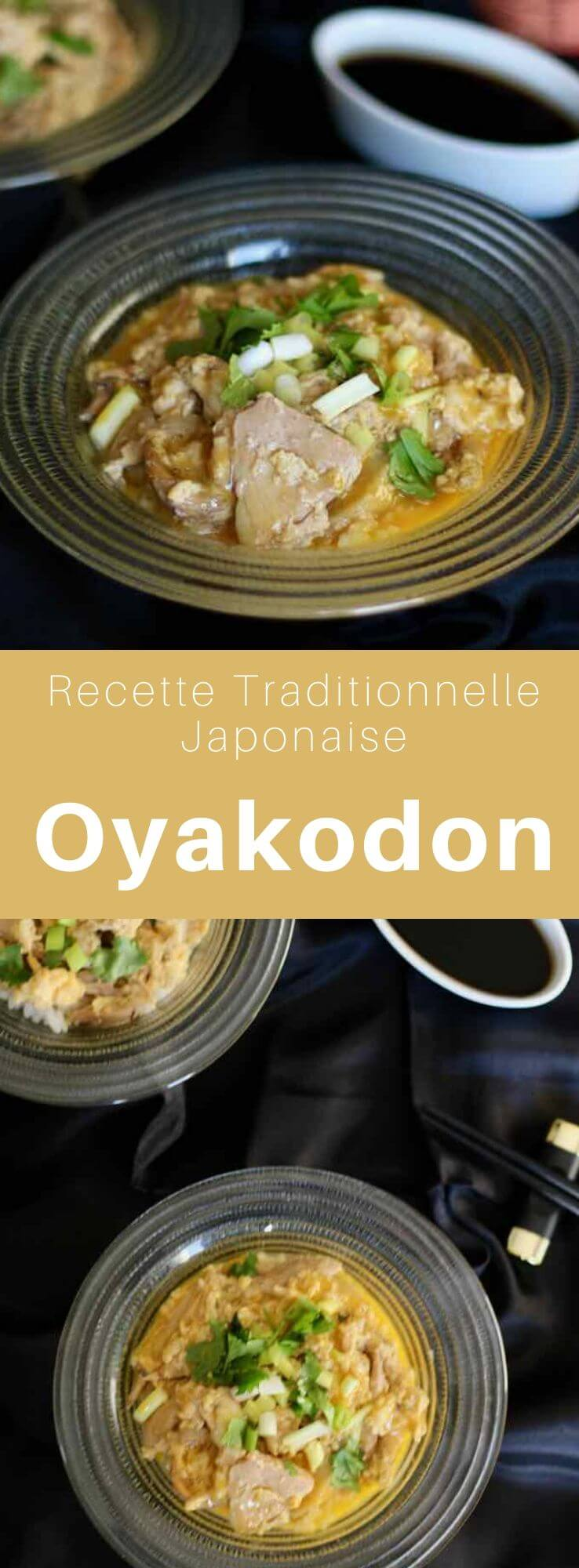 L'oyakodon (親子丼) est un donburi, composé de poulet et d'oeuf, assaisonné de dashi, de mirin, de saké, et de sauce soja, très populaire au Japon. #Japon #CuisineJaponaise #RecetteJaponaise #CuisineDuMonde #196flavors
