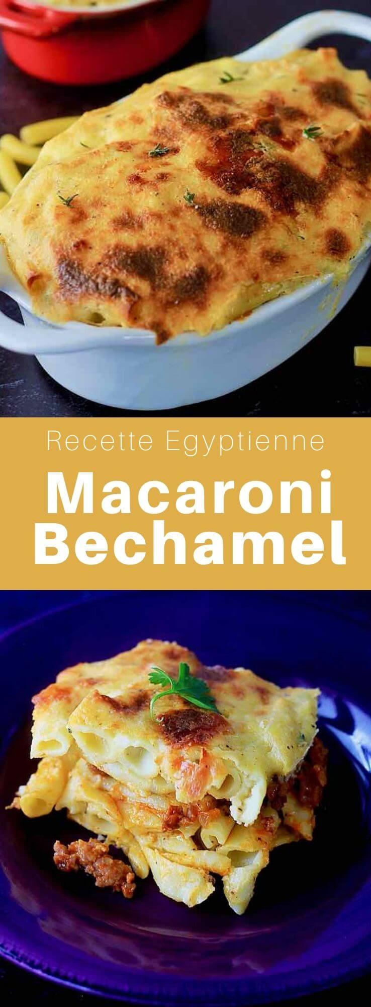 Le macaroni béchamel est un plat populaire égyptien composé de viande de bœuf épicée entre de couches de penne à la béchamel. #Egypte #RecetteEgyptienne #CuisineEgyptienne #CuisineDuMonde #196flavors