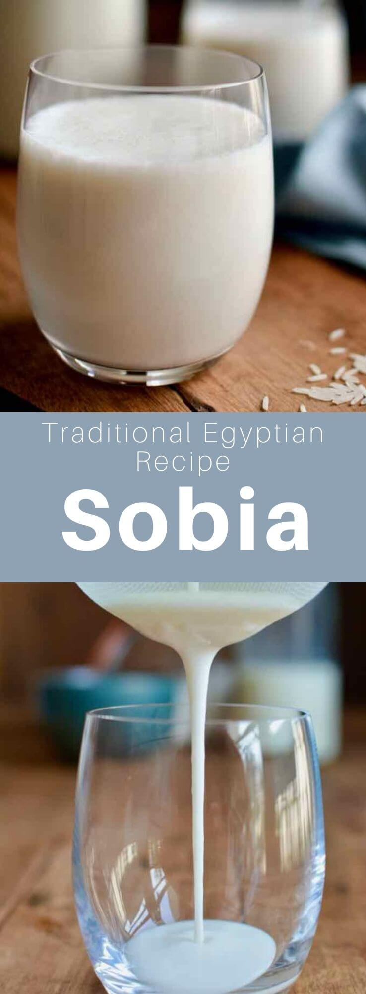Sobia is a sweet, creamy Egyptian rice and coconut drink considered the most popular drink during the holy month of Ramadan. #Egypt #EgyptianCuisine #EgyptianFood #EgyptianRecipe #WorldCuisine #196flavors
