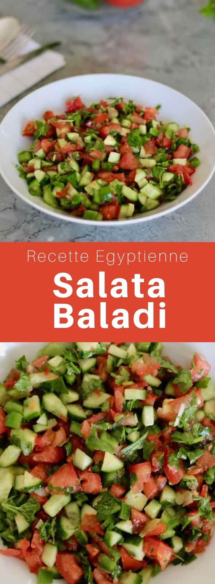La salata baladi (سلطة البلدي), ou salata arbya (سلطة عربية) est une salade arabe de crudités populaire en Égypte, au Moyen-Orient et en Afrique du Nord. #Egypte #RecetteEgyptienne #CuisineEgyptienne #CuisineDuMonde #196flavors